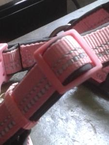 pink collar adjustment